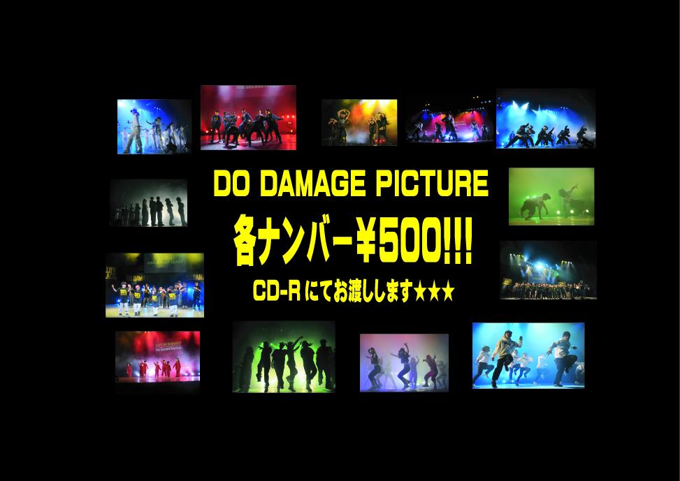 dd_pic.jpg